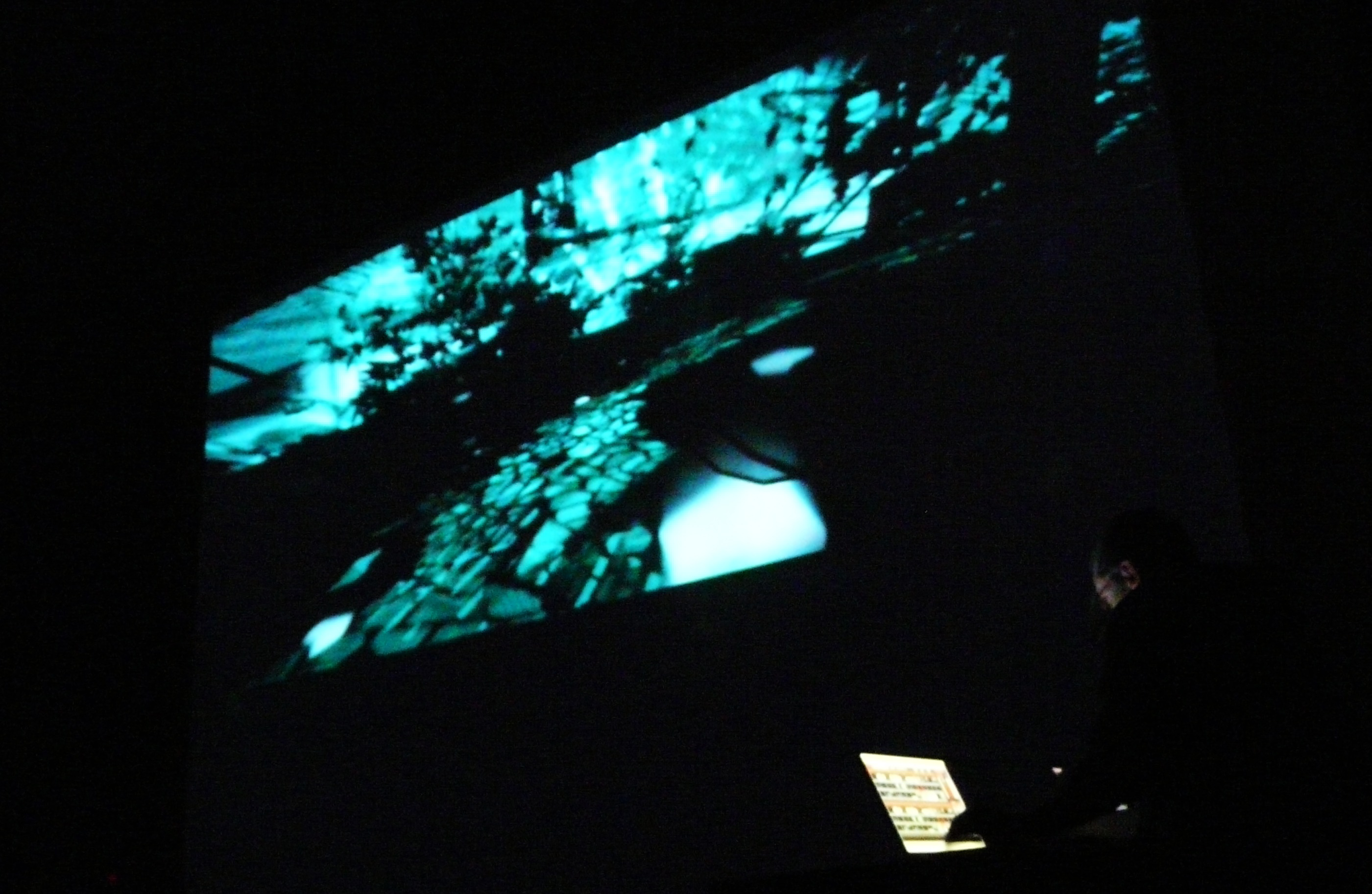 "<span class=""entry-title-primary"">Giardini neri</span> <span class=""entry-subtitle"">Live audiovisual performance</span>"